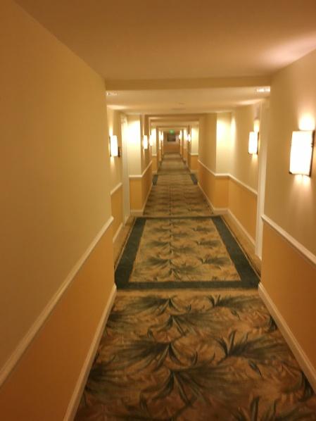 Florida Themed Hallways